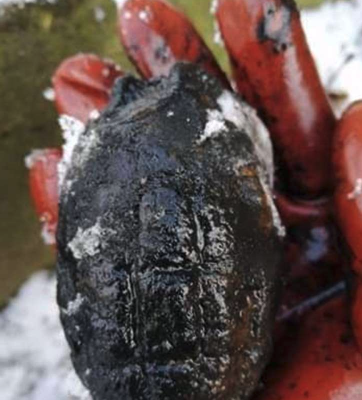 Magnet fisherman pulls Unexploded Ordnance (UXO) from Spalding river