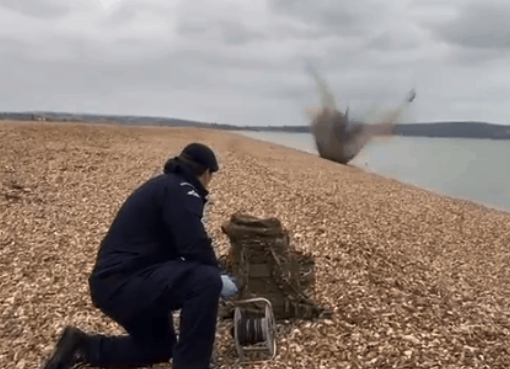 UXO unearthed by dog on Hurst Spit