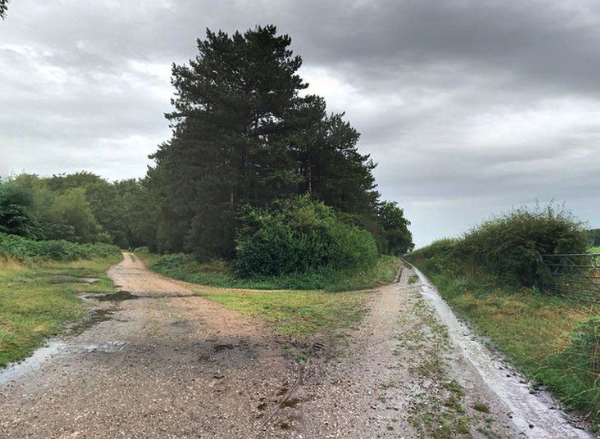 EOD team called to woodland in Nottinghamshire after 100 hand grenades discovered