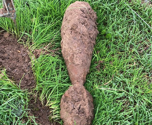 Pigs root out Second World War UXO in Norfolk